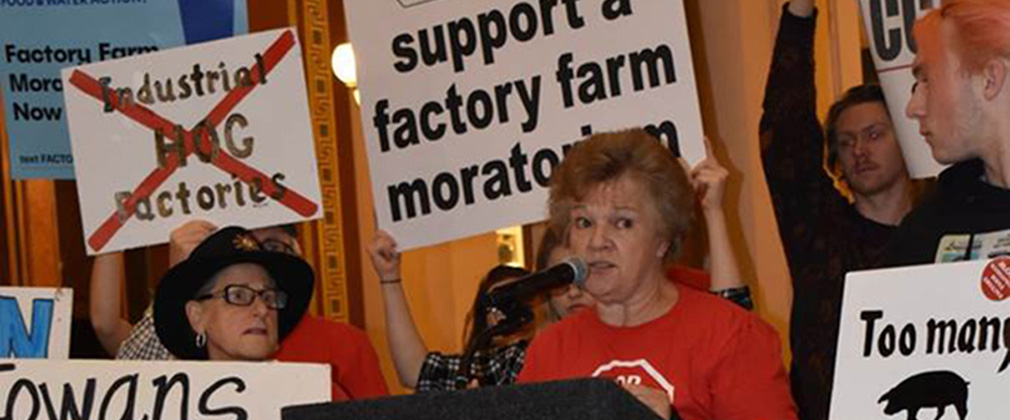 support-for-Iowa-moratorium-on-hog-confinement-operations-1010