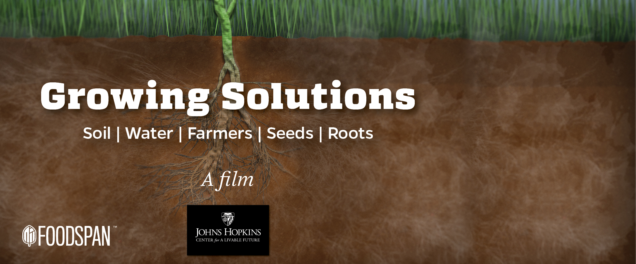 Growing Solution